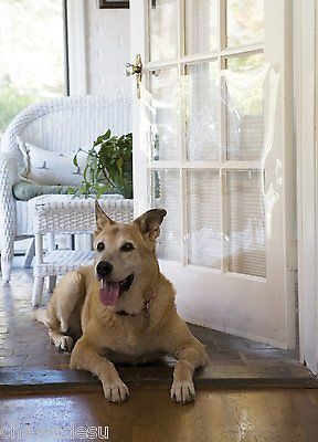 Awesome Dog Scratching Door
