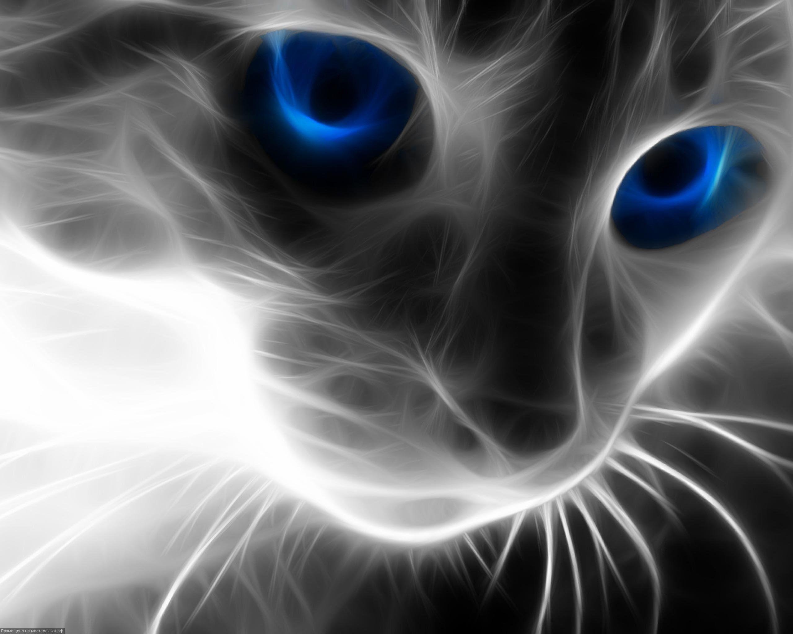 Обои кот, Кошка. Кошки foto 9
