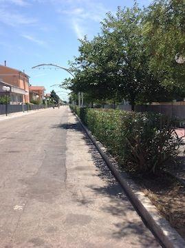 Pescara filovia: Sospiri ribadisce la necessità di attivare il primo collegamento