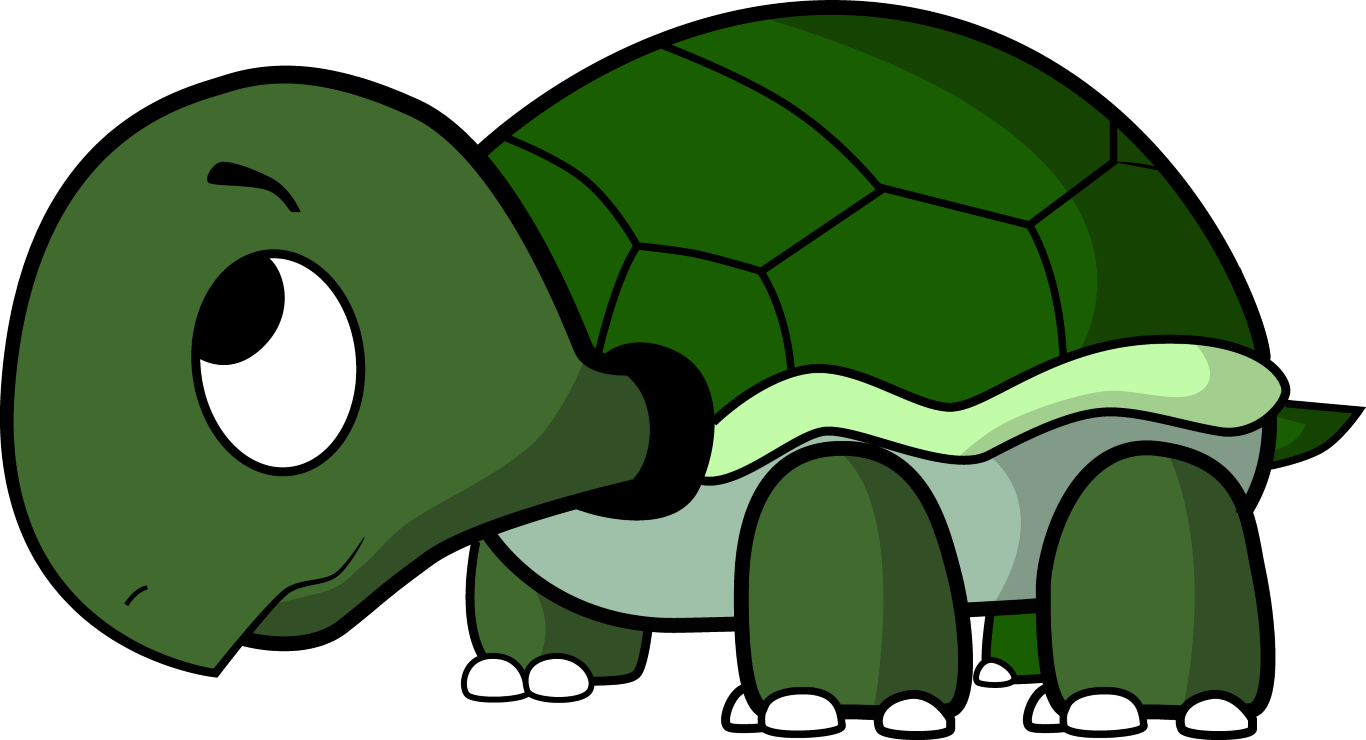 How To Draw A Cartoon Turtle Cartoon turtle, Pictures of