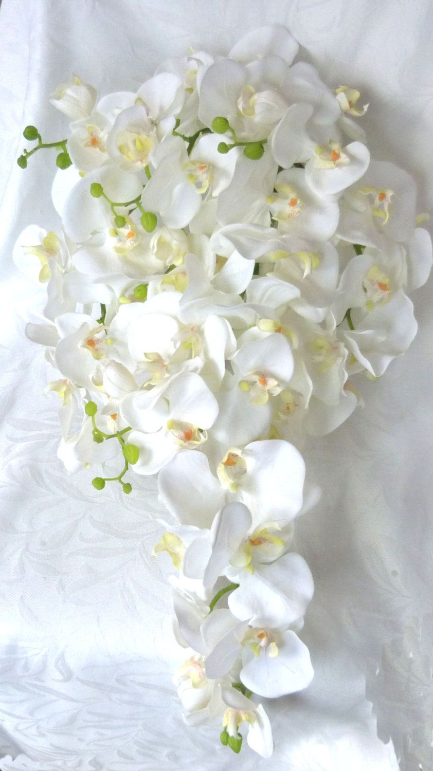 Cascade white orchid bouquet u boutonniere phalaenopsis orchid