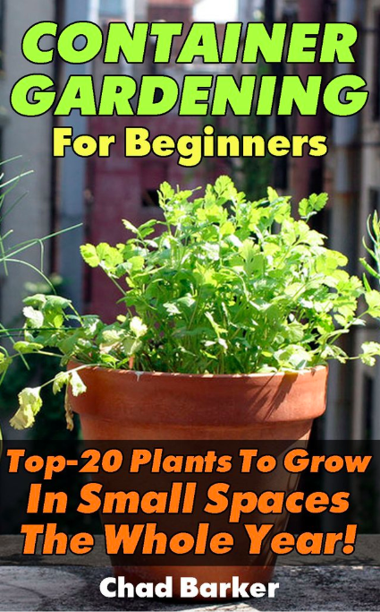 Container Gardening For Beginners Top 20 Plants To Grow In Small