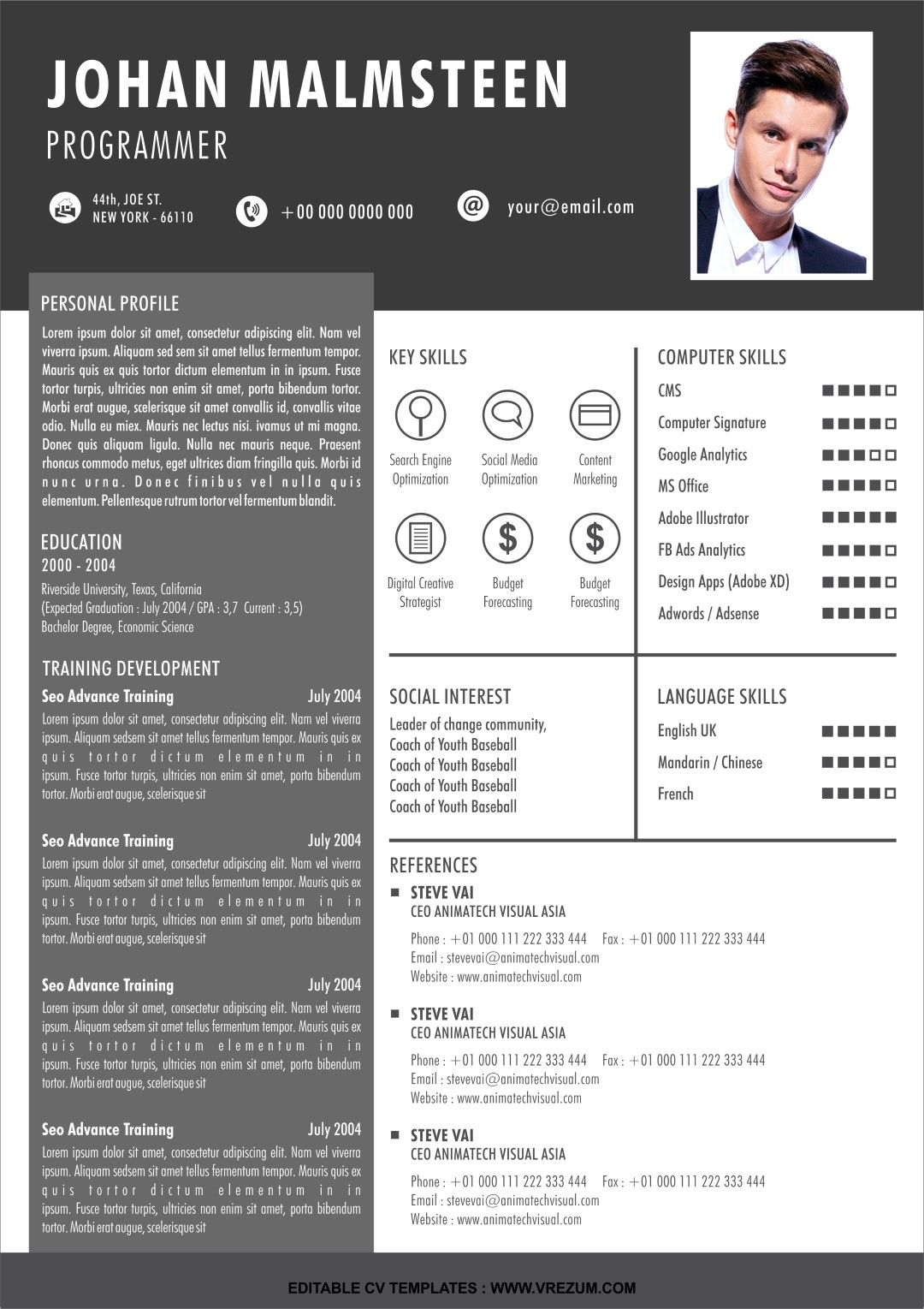 (EDITABLE) FREE CV Templates For Programmer in 2020 (With