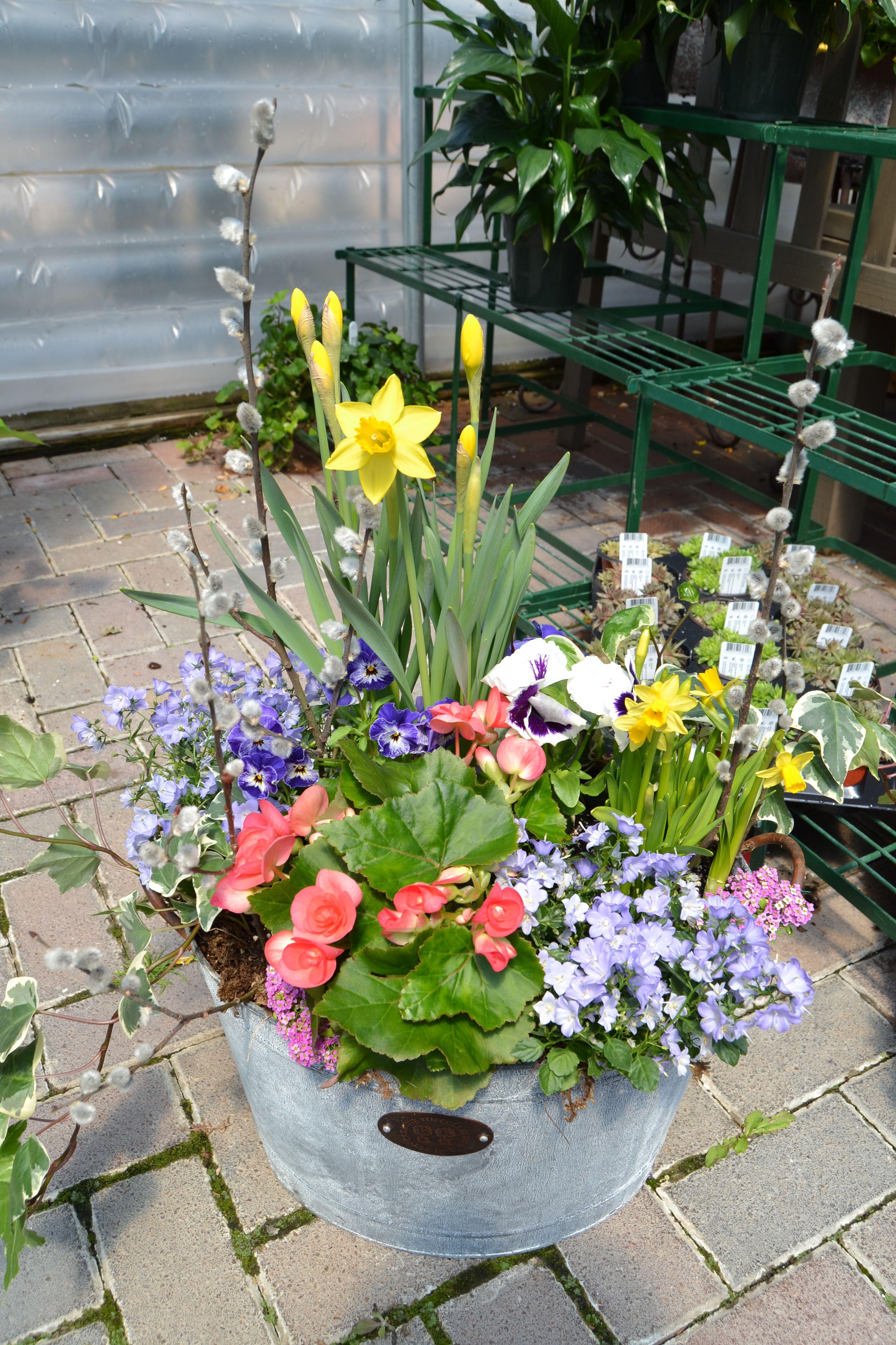 Spring Container Garden Idea.  Easter, April 2014