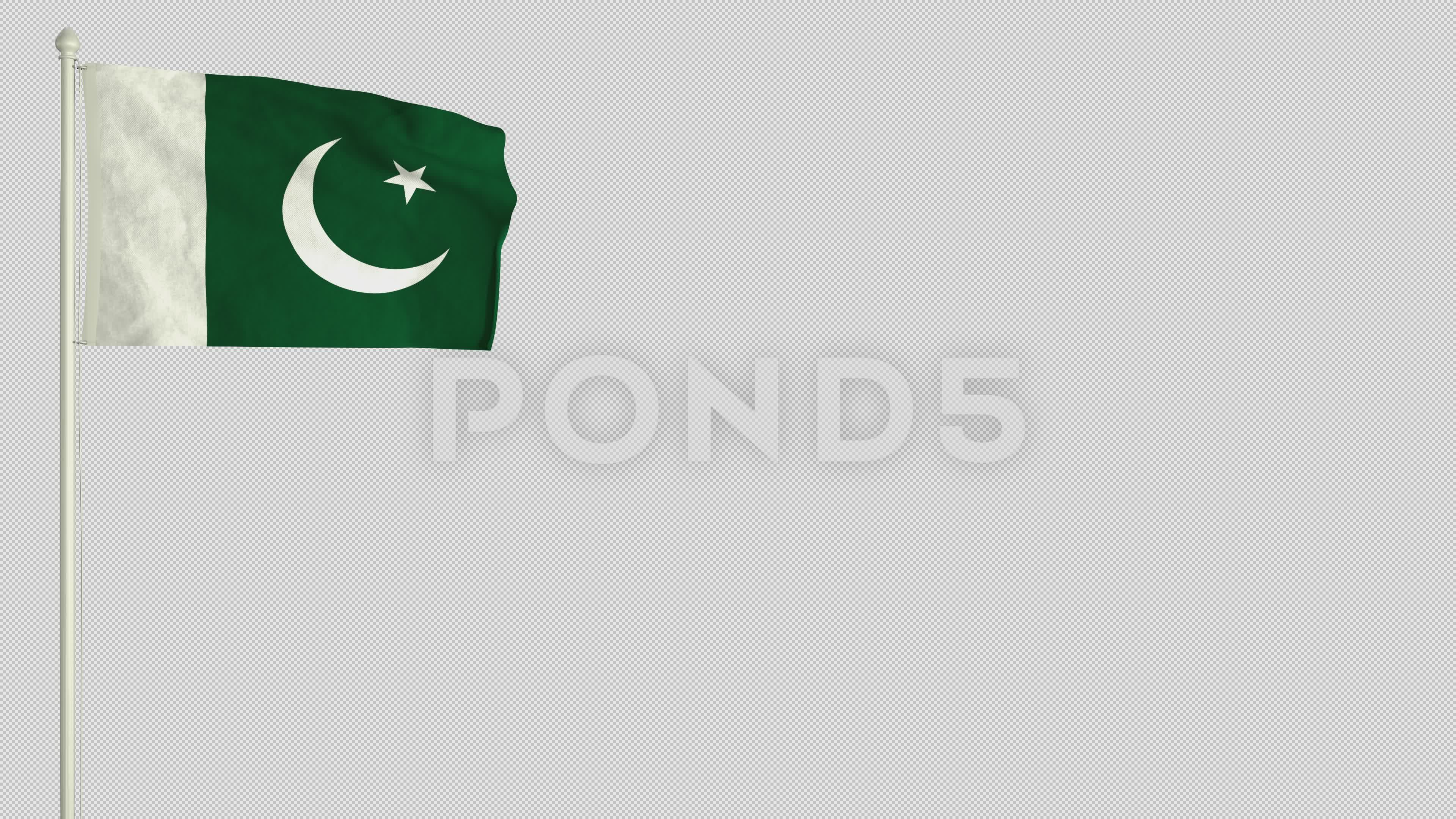 Pakistani Flag Waving In The Wind With Png Alpha Channel Stock Footage Waving Wind Pakistani Flag Pakistani Flag Alpha Channel Portfolio Templates