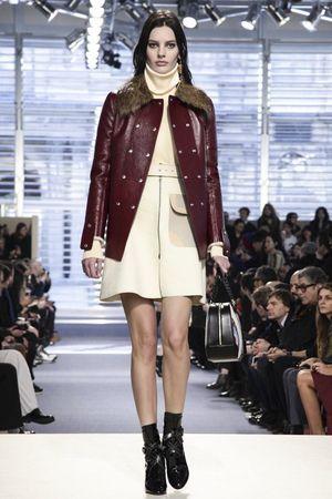 Louis Vuitton Ready To Wear Fall Winter 2014 Paris