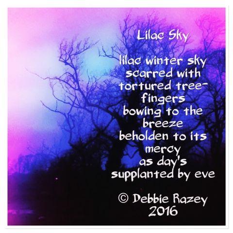 aesthetica poetica lilac sky poetry poem skies