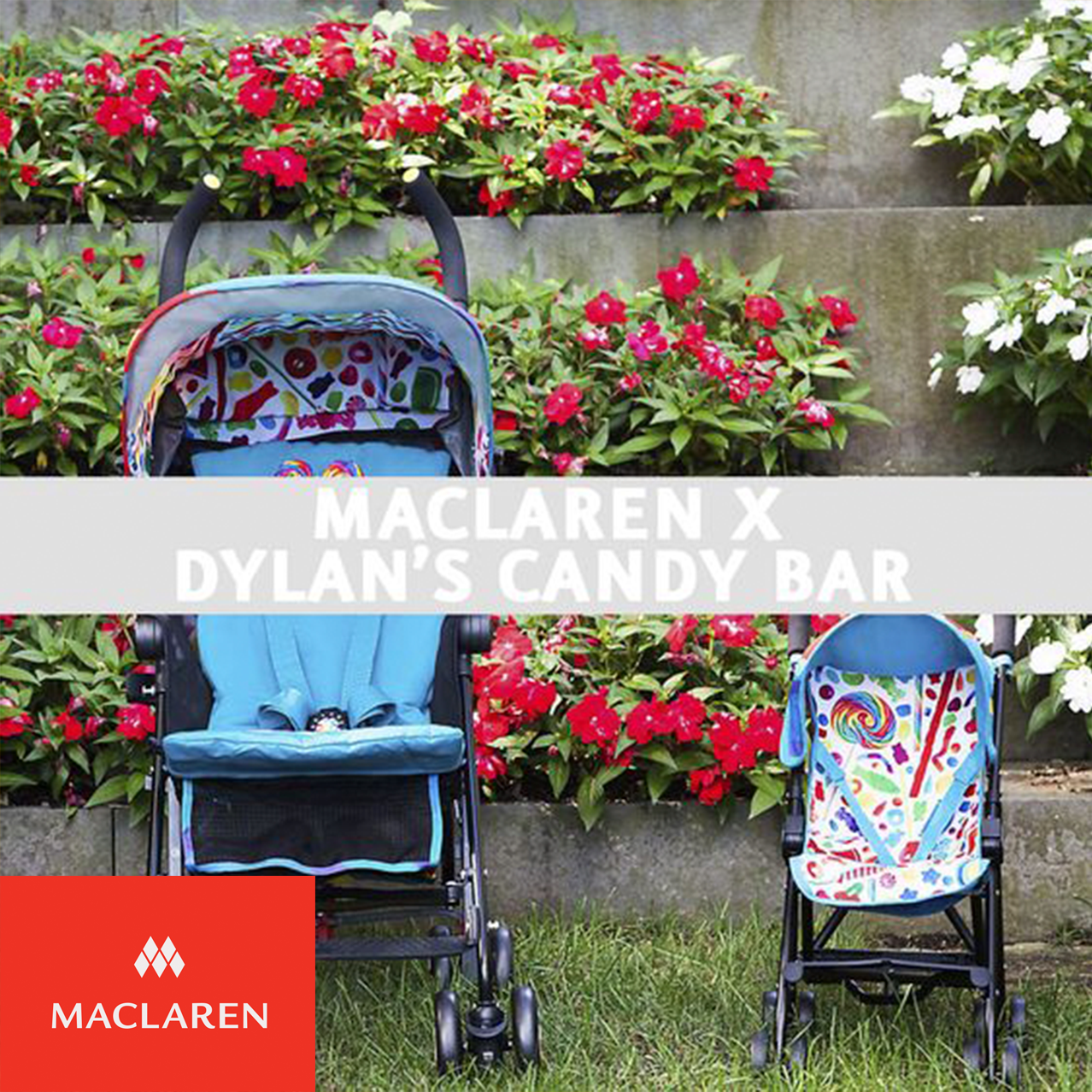 Pin by Maclaren on Maclaren X Dylan's Candy Bar Dylan's