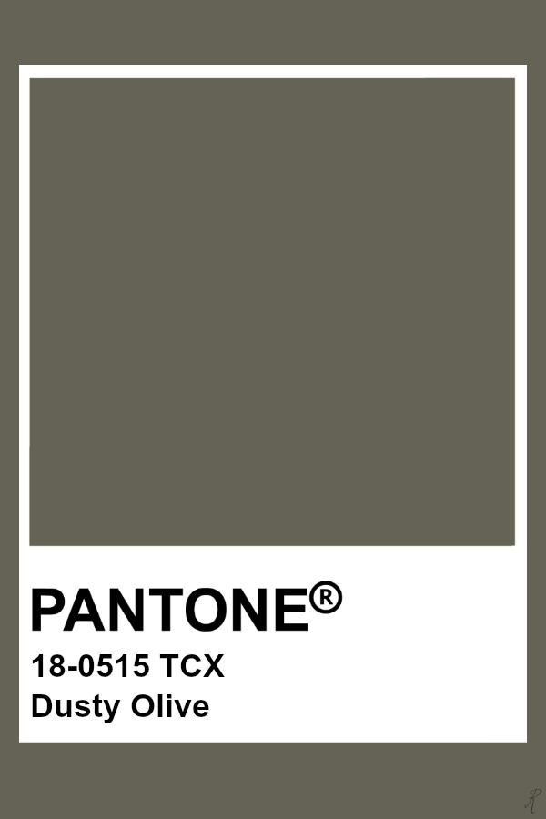 Pin by color wheel on green moss olive avocado khaki - Sage green color wheel ...