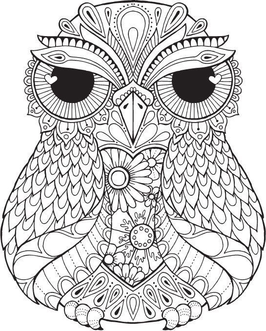 Lana Owl - Colour with Me HELLO ANGEL - coloring, design ...