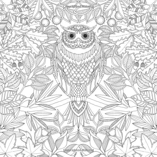 Free Printables Inspirational Coloring Pages From Secret Garden Enchanted Forest And Other Books For Grown