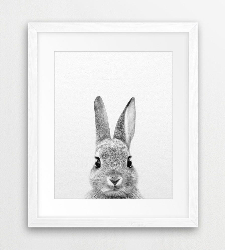 Bunny Portrait Kids Rooms Woodland Nursery Decor