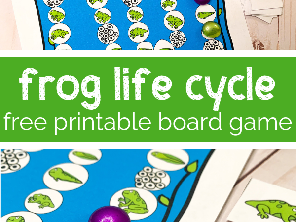 Frog Life Cycle Printable Board Game Frog life cycle