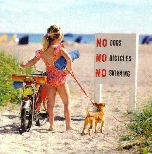 no dogs  no bicycles  no swimming