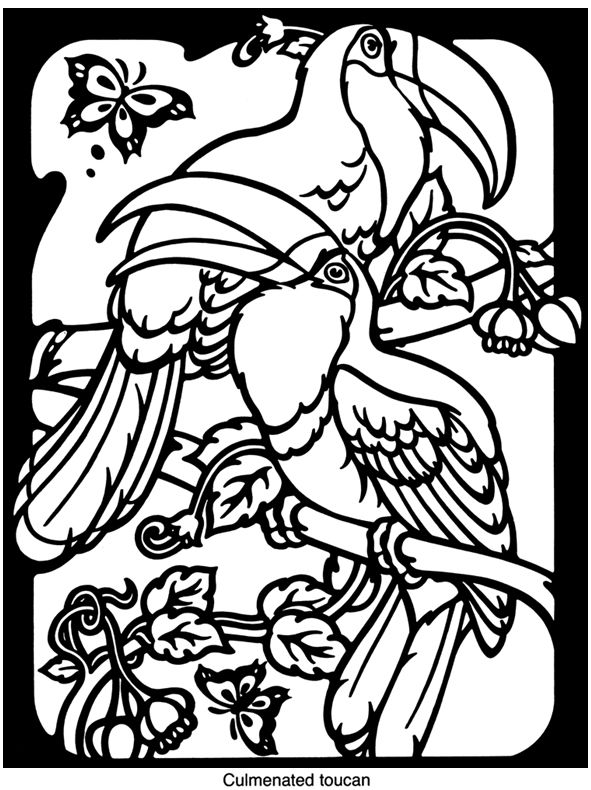 Exotic Bird Coloring Pages birds stained glass coloring