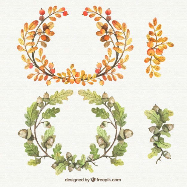 Watercolor Autumnal Wreaths Wreath Drawing Wreath Illustration Watercolor Flowers