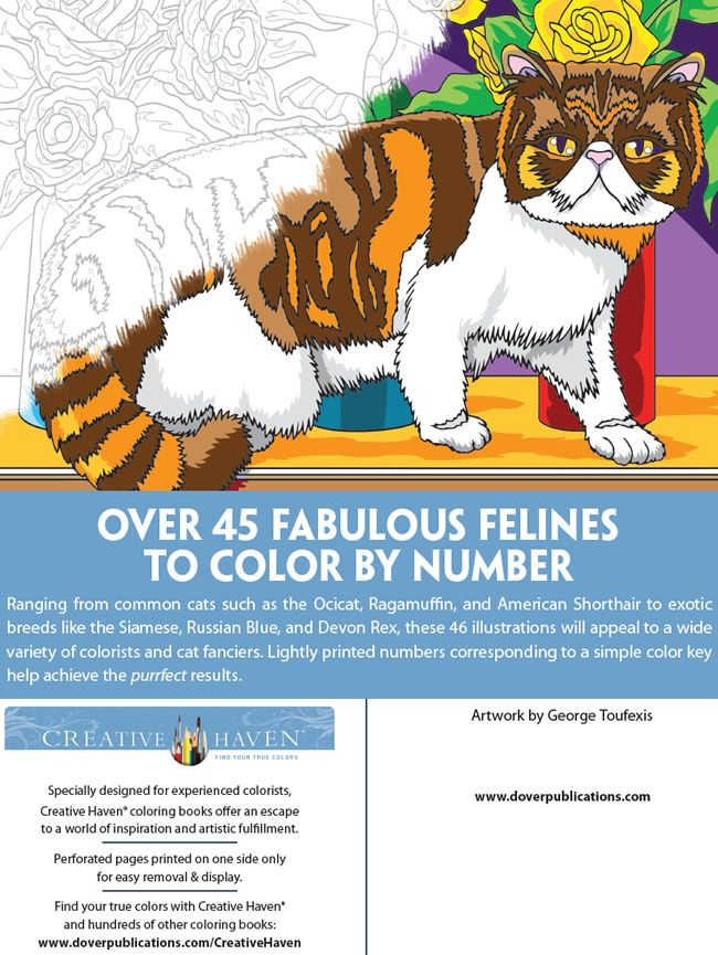 Welcome to Dover Publications   Para colorear   Pinterest   Dover ...