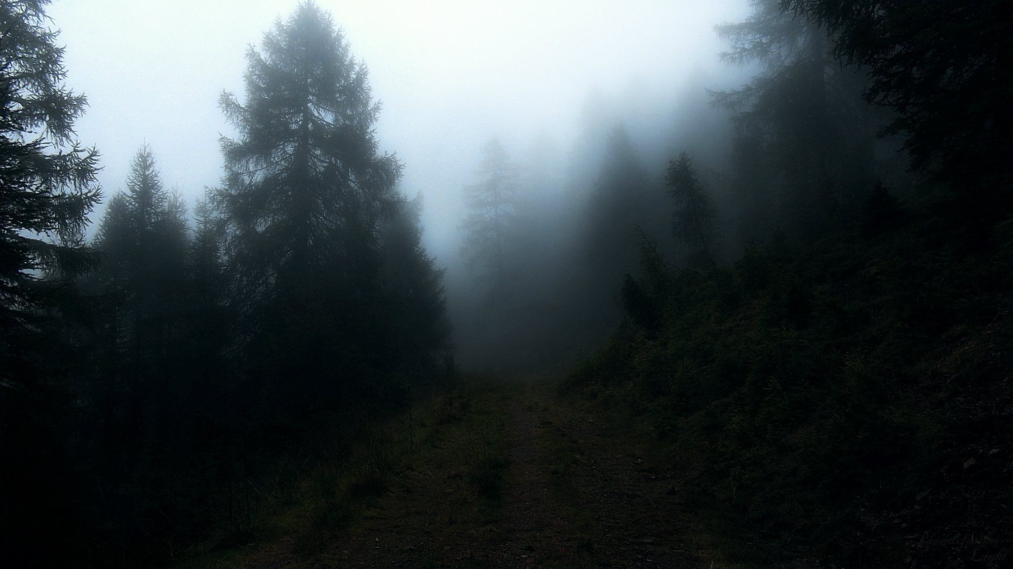 Atmospheric/Ambient Black Metal