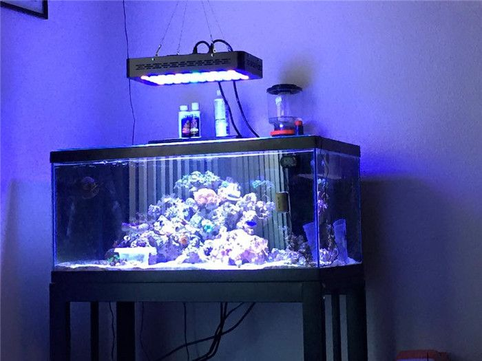 Best aquarium fish tank led lighting aqua led for Fish tank lighting