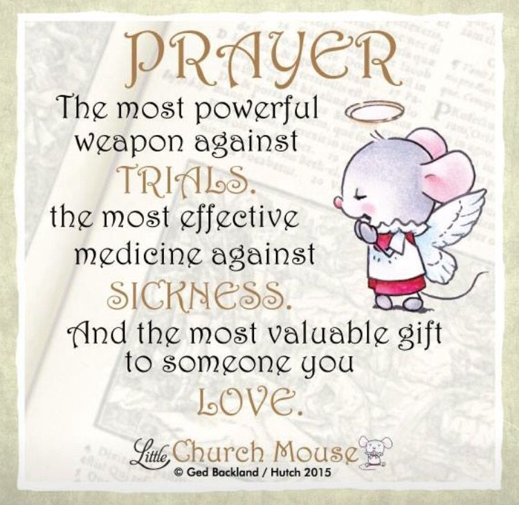 Pin by Maggy Manzullo on Little Church Mouse | God prayer, Prayer