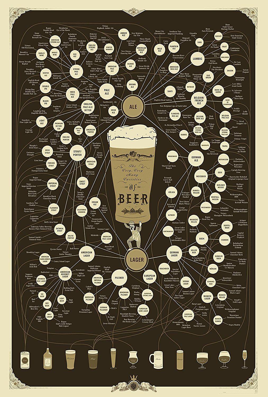 Pop Chart Lab The Diagram Of Beer 18 X 24 Posters Prints Incandescent Light How Flourescent