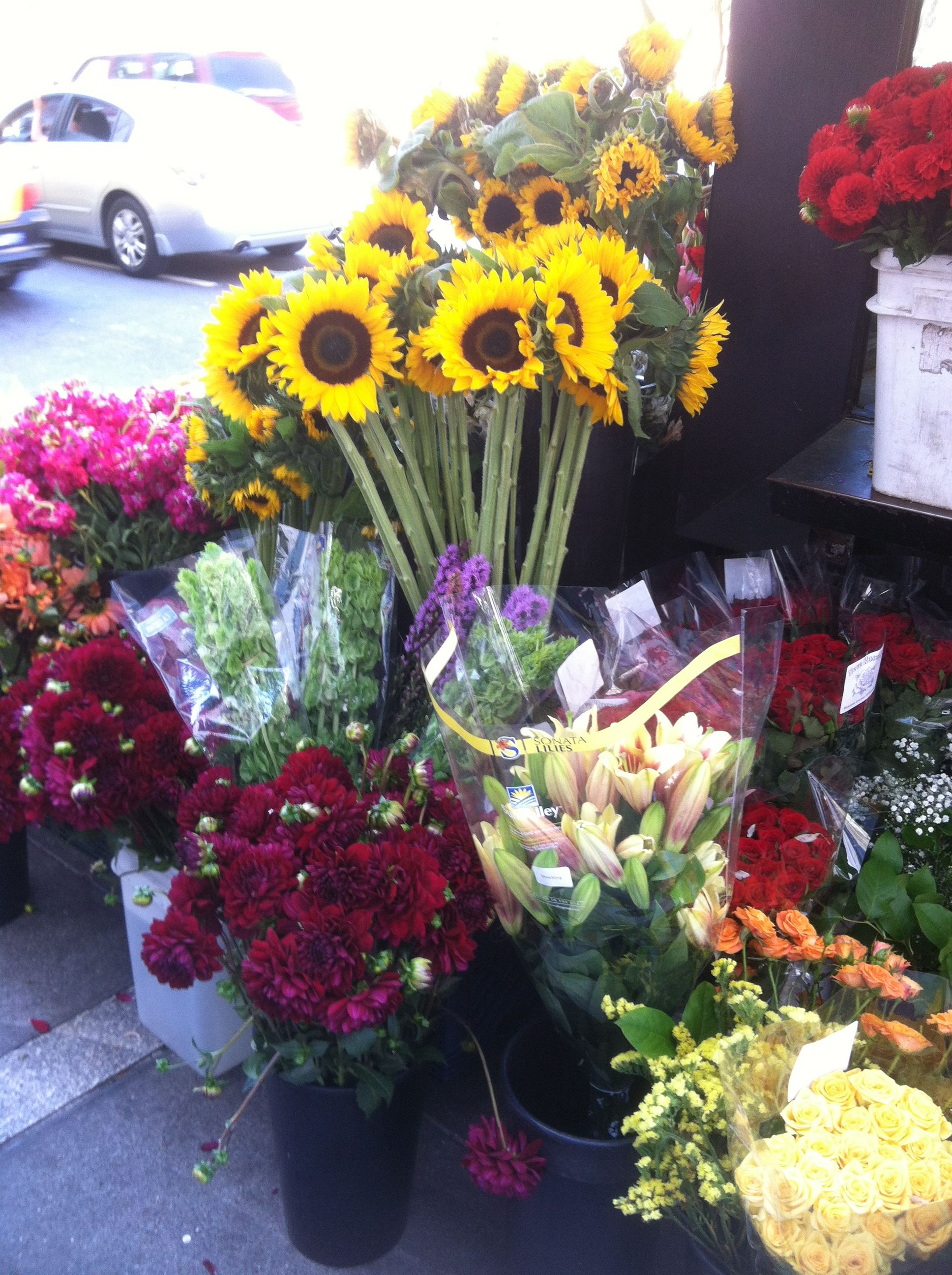 Flower market san francisco ca flower market flowers