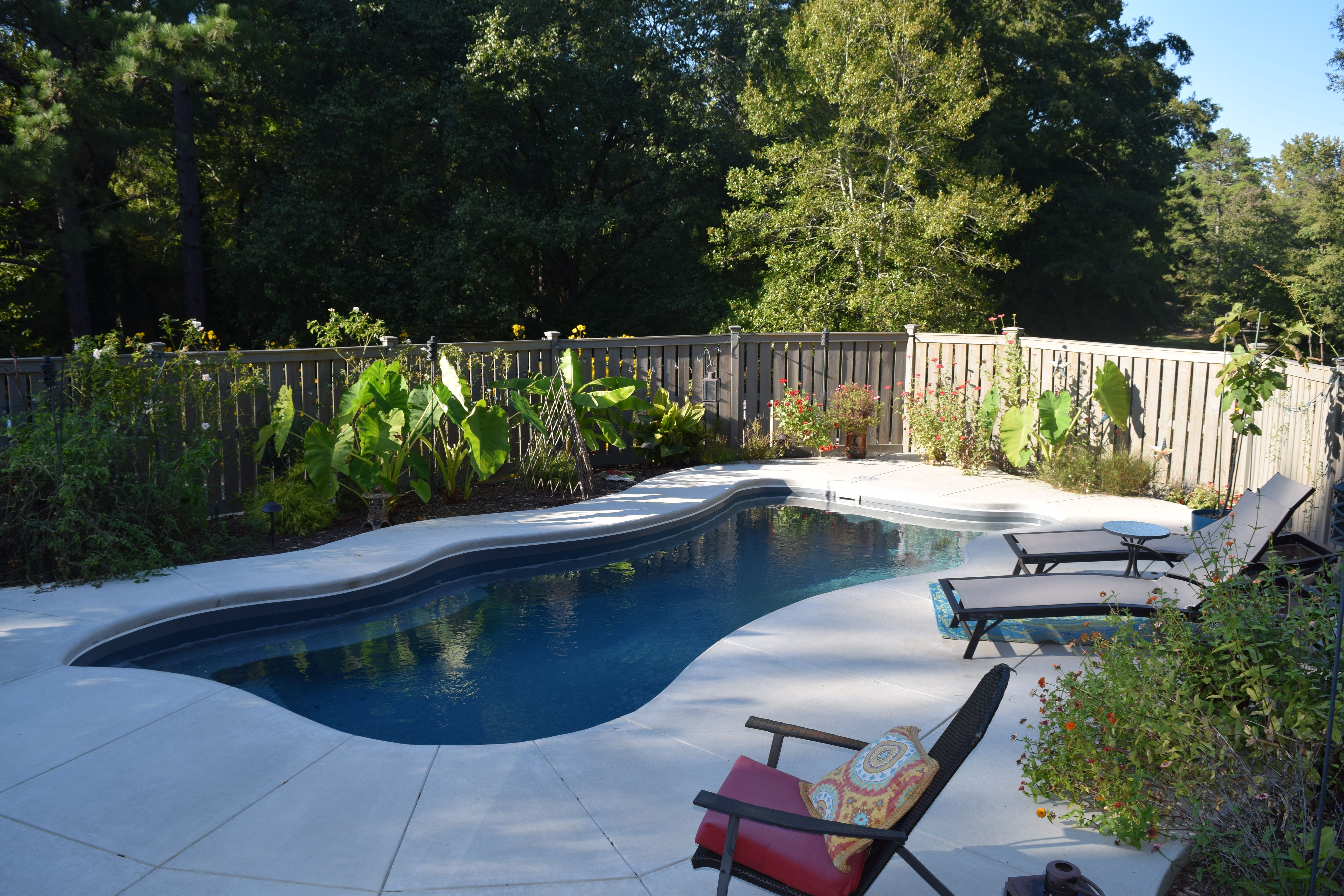 charlotte fiberglass swimming pools made this clients backyard