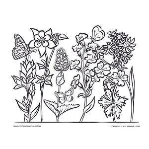 Adult Coloring Pages Adult Coloring Pages Pinterest Coloring
