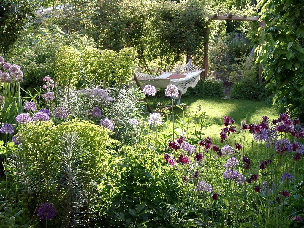 wolfsmilch vielfalt f r den garten gardens garden ideas and plants. Black Bedroom Furniture Sets. Home Design Ideas