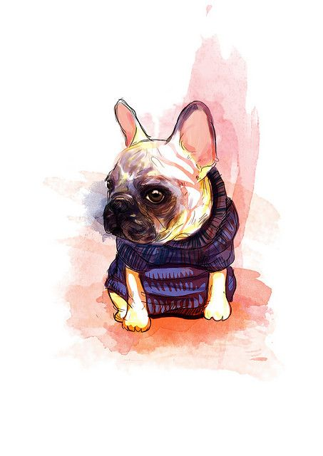 French Bulldog Dog Art Bulldog Art French Bulldog