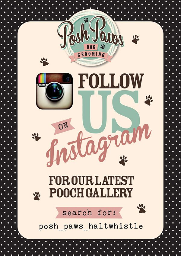 Posh Paws Dog Grooming Salon Is A Lovely Friendly Clean And Modern Fresh New Salon Situated In Northumberland This Was Suc With Images Dog Grooming Salons Grooming Salon