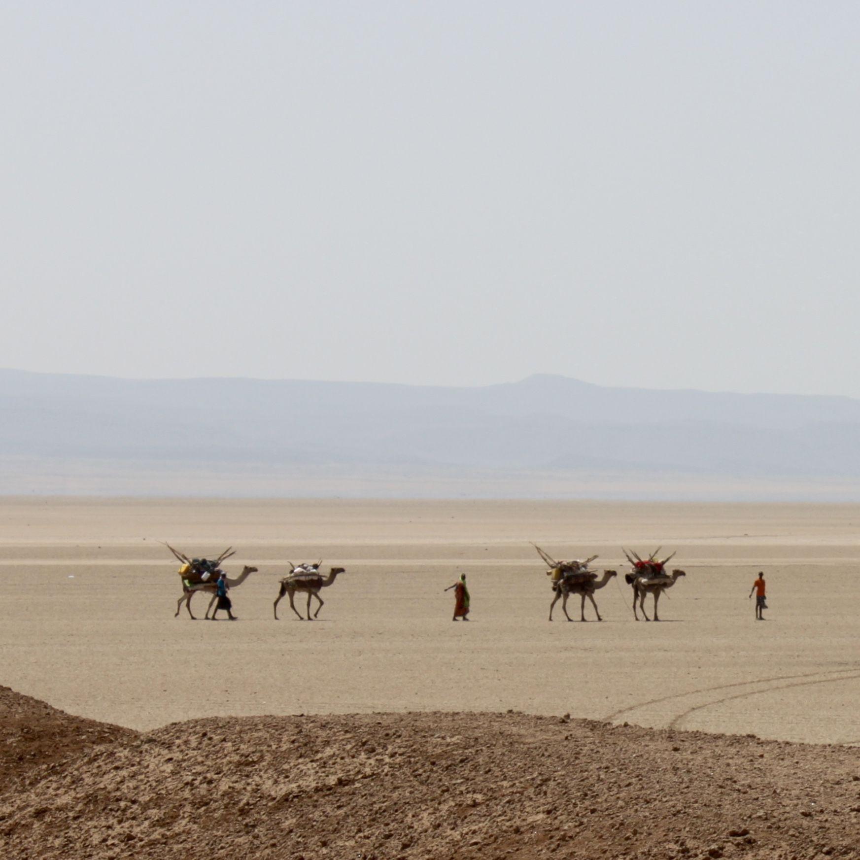 Djibouti 2015