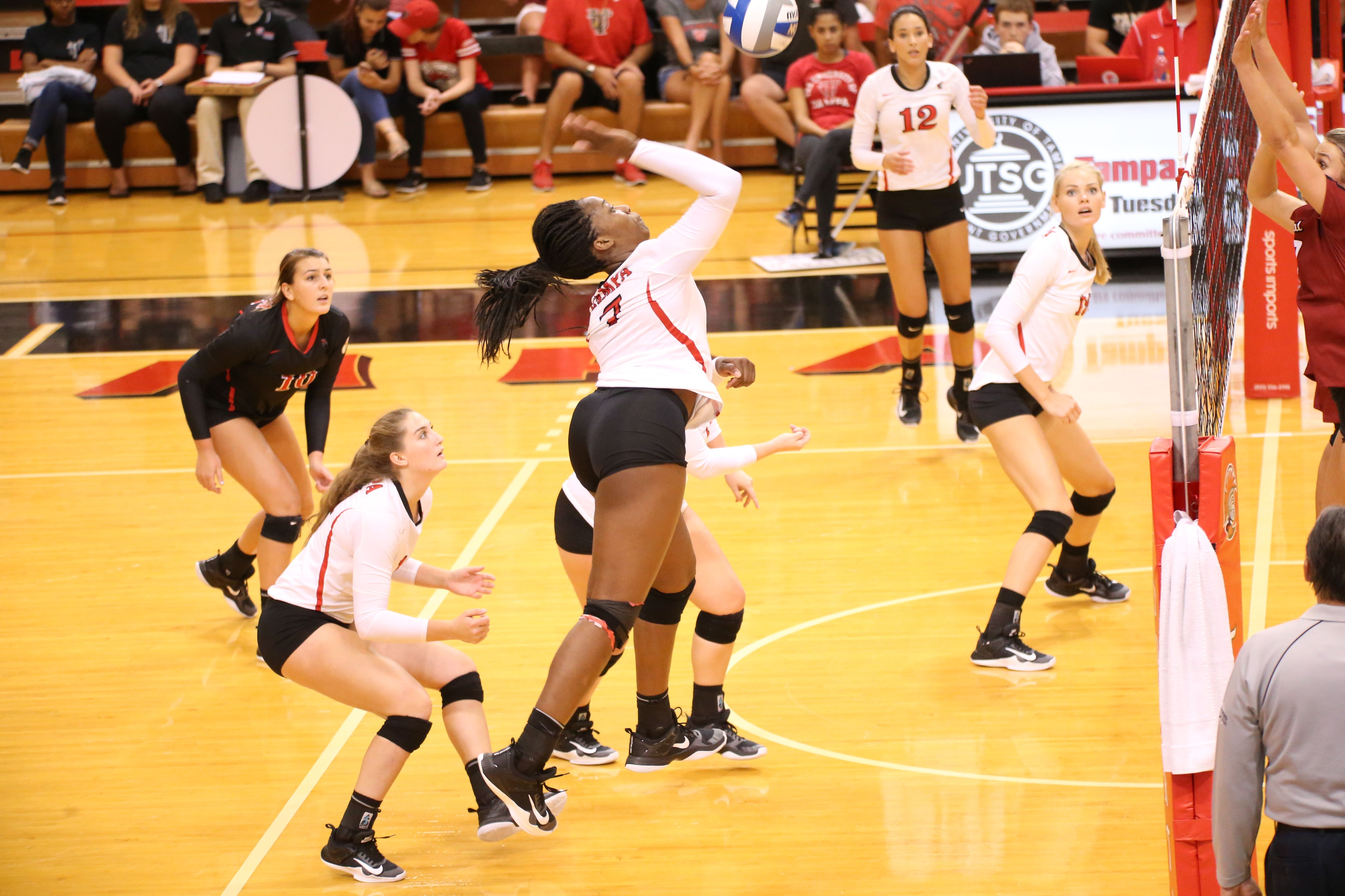University Of Tampa Women S Volleyball Women Volleyball University Of Tampa Volleyball