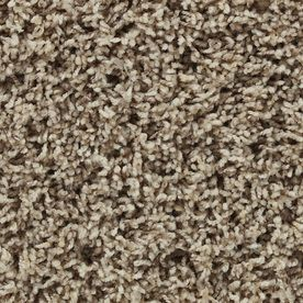 Carpet In Living Room And Office Area Stainmaster Active