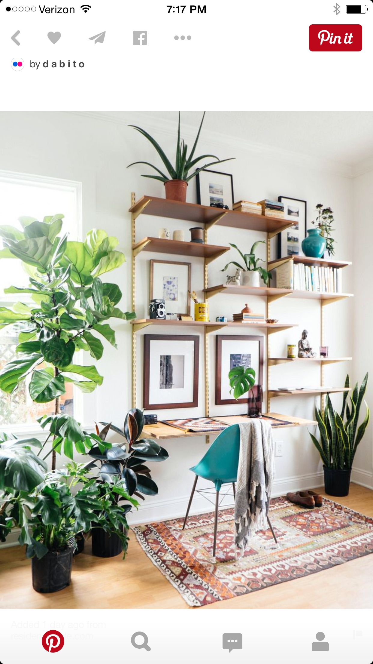 Perfect Office Plants. Work Space With Indoor Plants + Diy Mid Century Desk  Wall