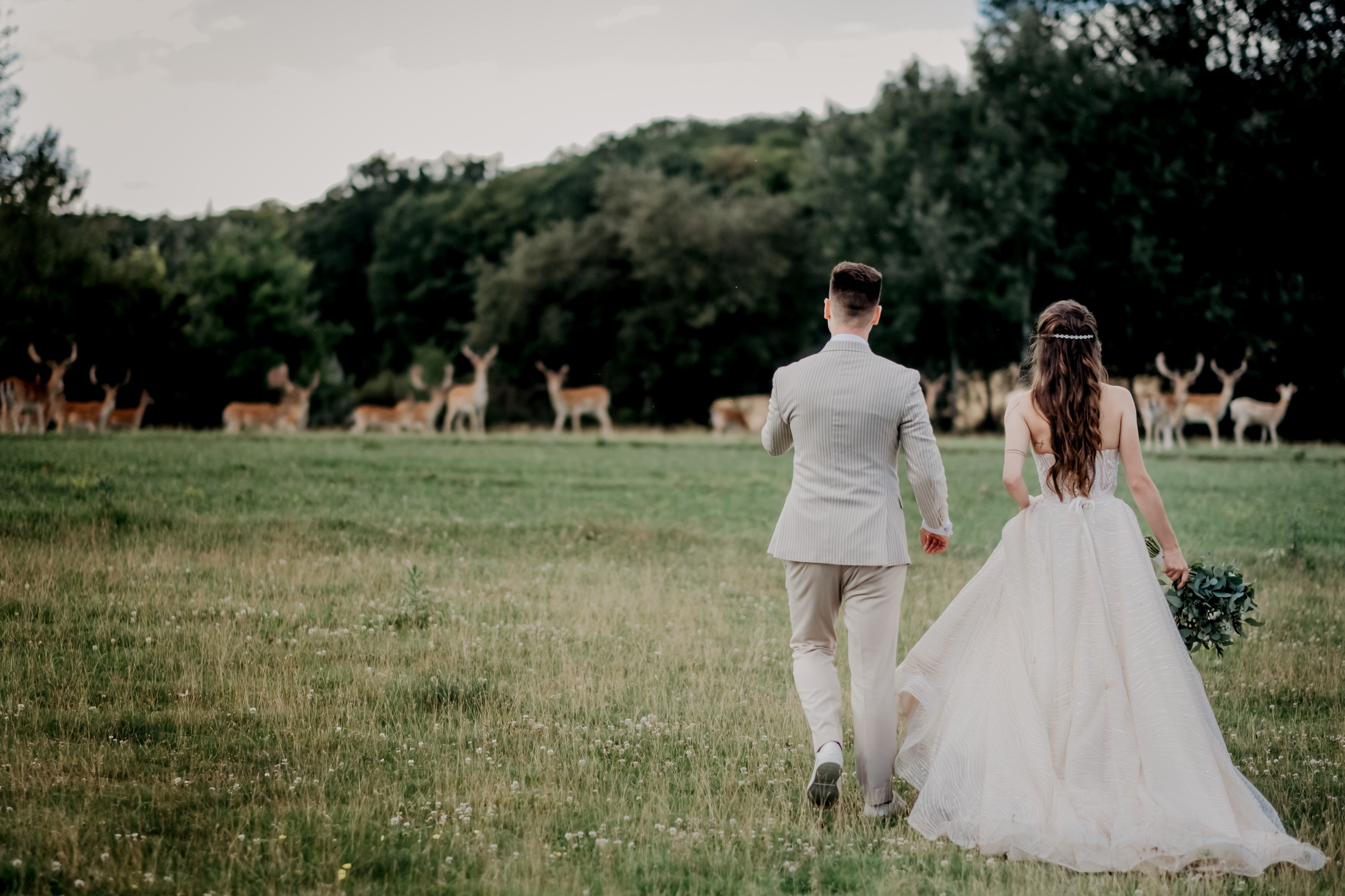 結婚式のオススメ曲 5000組が選んだ人気のbgmランキング 結婚式 曲 ウェディング Bgm ウェディング