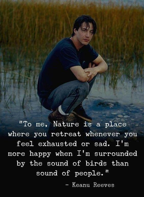 To me, Nature is a place where you retreat when you feel exhausted or sad. I'm more happy when I'm surrounded by the sound of birds than sound of people - Keanu Reeves