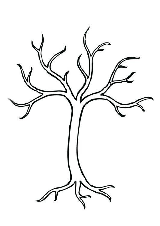 Malvorlage Baum | ideen | Pinterest | Baum, Herbst und Jahreszeiten ...