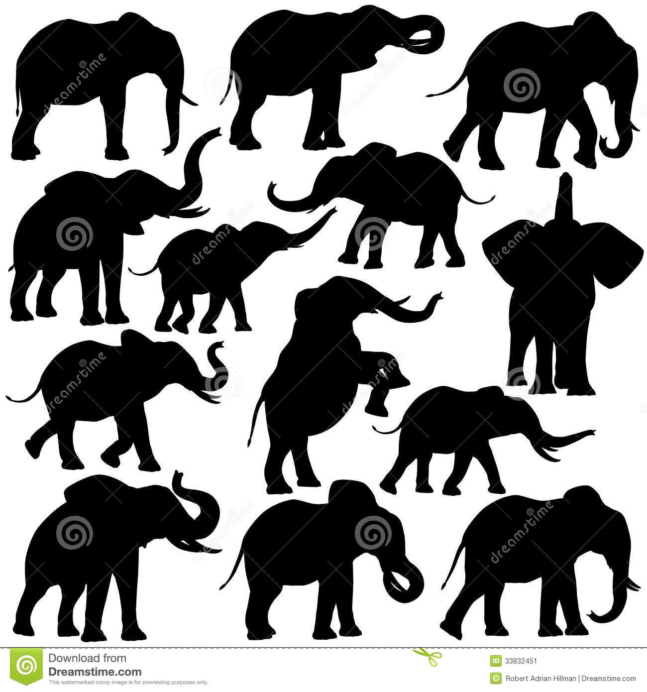 set of editable vector silhouettes of african elephants in various poses by robert adrian hillman via shutterstock