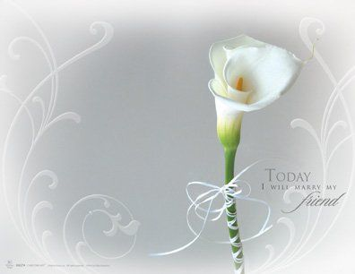 Wedding Program Cover Calla Lily Grey Background U6274