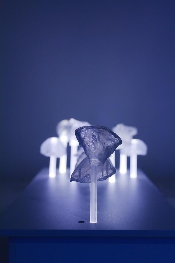 Dots. Funghi spara pallini by Marianna Milione, via Behance