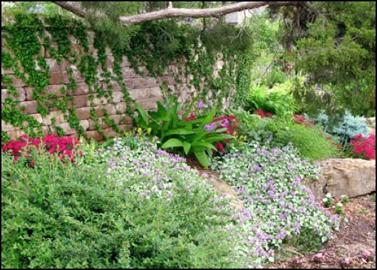 Landscaping on a hillside steep slope terraces prevent for Hillside landscaping plants