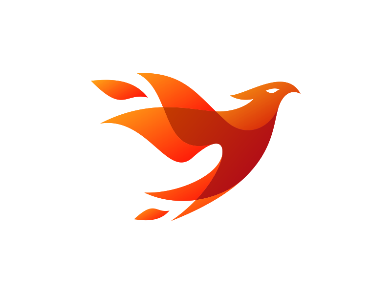 Phoenix Bird Logo Design Bird Logos Graphic Design Logo
