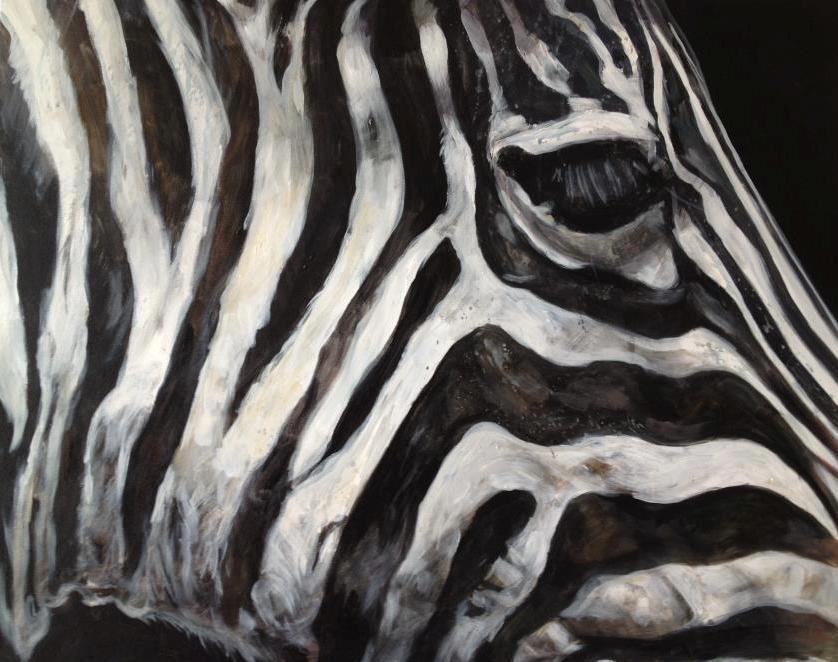 Best 25+ Zebra drawing ideas on Pinterest | Zebra art ...