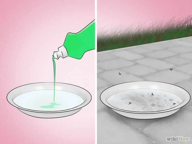 cd968aacfe8f4bd87c9038ab2db57952 - How To Get Rid Of Mosquito Larvae In Water Feature