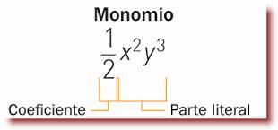 Un Monomio Es Una Expresión Algebraica O Un Sólo Término Algebraico Que Contiene Un Sigo Un Número Llamado Coe Polinomios Matematicas Trabajo En Grupo