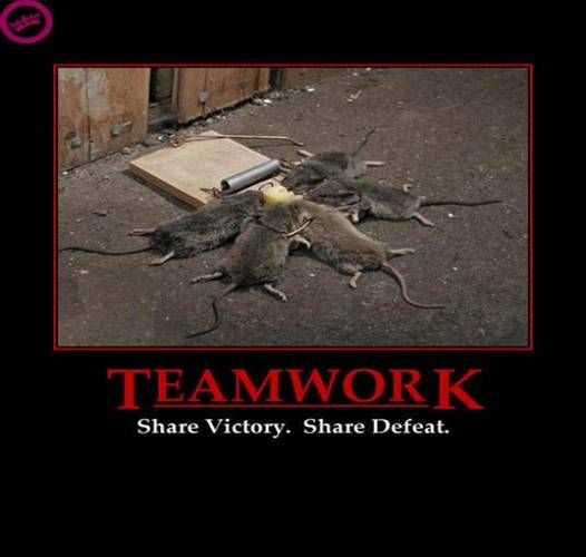 Teamwork Share Victory Share Defeat Amusements Funny