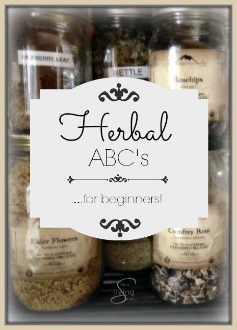Simply Herbal ABC's for Beginners Simply Living Simply   I am so proud and extremely excited to be sharing a whole series on Herbal ABC's for beginners...and old-timers alike. You can find this month...
