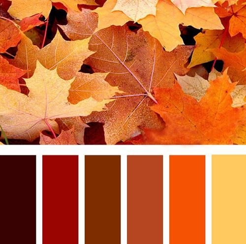 Fall Color Scheme Endearing With Rooms with Orange Color Scheme Image