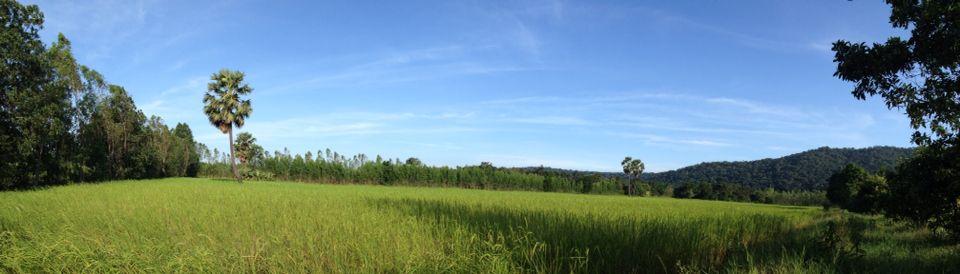 Praxtons Farm #prachinburi